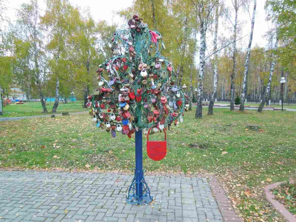 Дерево молодоженов