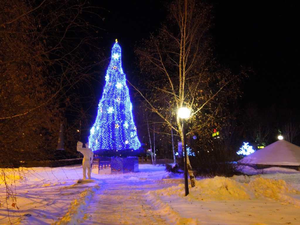 Вид ночного города Яхрома