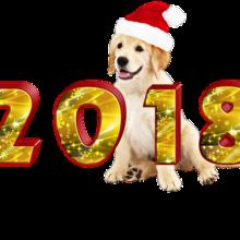 Новый 2018 год!