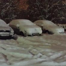 Снежный апокалипсис 2018